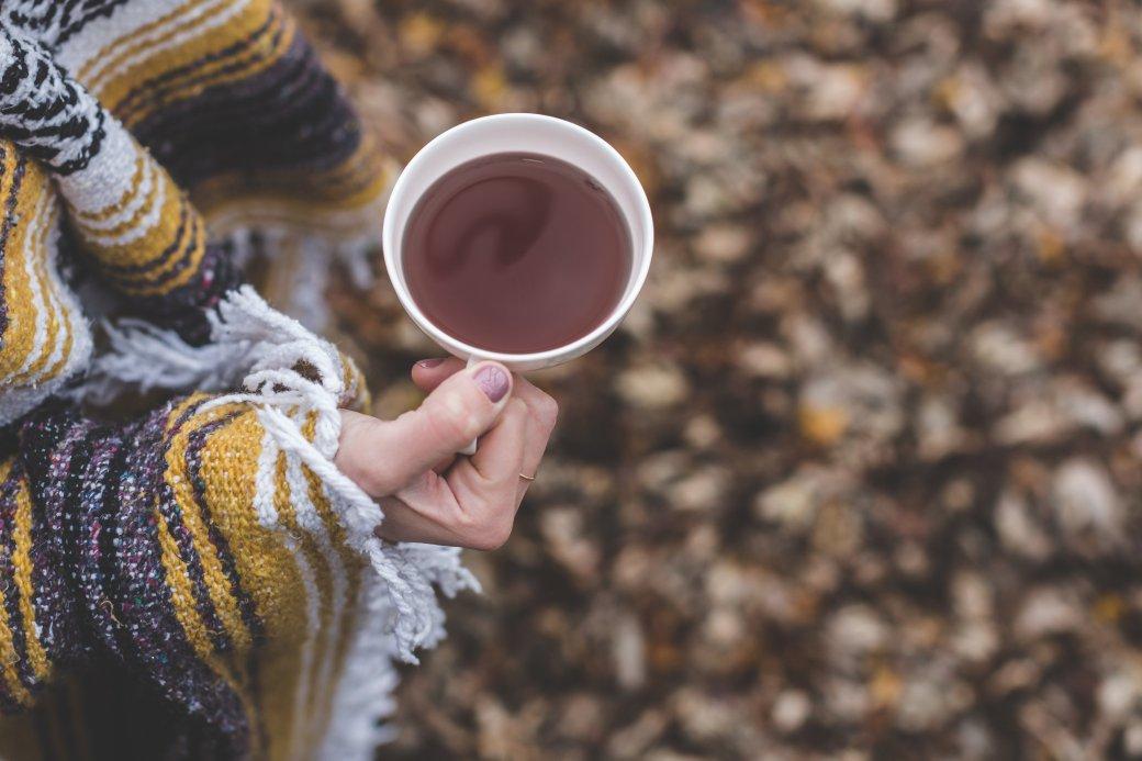 cup-of-tea-in-autumn_4460x4460.jpg